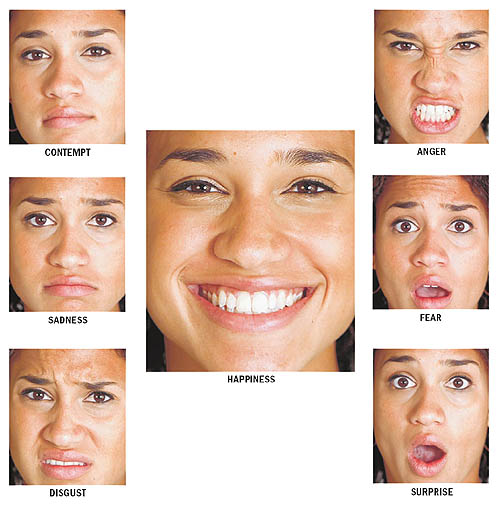 Facial expressions of emotion question